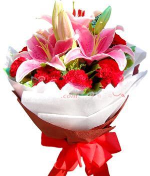 10枝紅色康乃馨/溫暖的關懷
