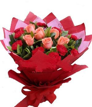 10枝紅色康乃馨/我愛您