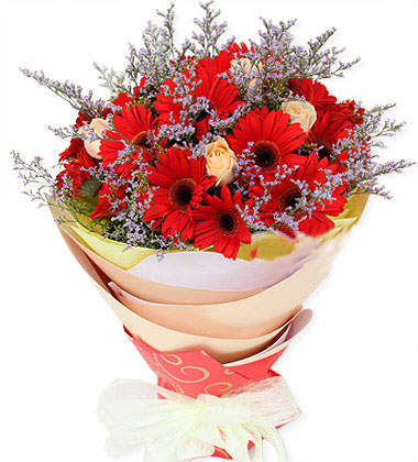好心情/18枝紅色太陽花