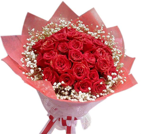 33枝红玫瑰/爱的奇迹