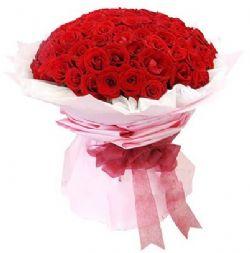 99枝红玫瑰/天使之吻