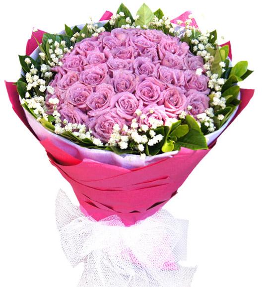 22朵紫玫瑰/