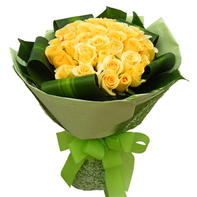 27朵黄玫瑰/对不起,我爱你