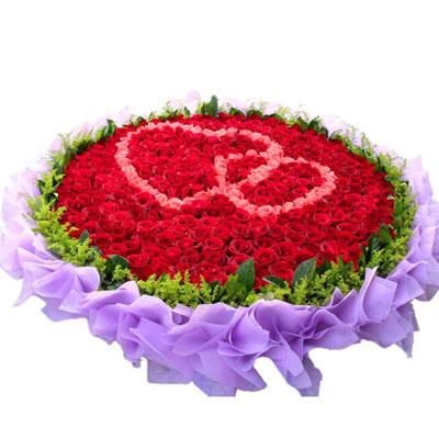 365朵红玫瑰/想你365天