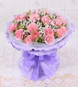 18枝粉色康乃馨/真心真意
