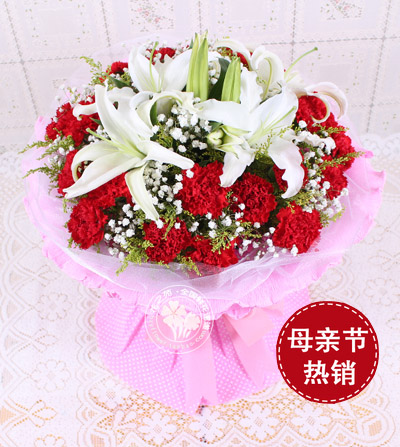 19朵紅色康乃馨/母愛的偉大