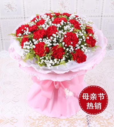 18枝红色康乃馨/节日快乐