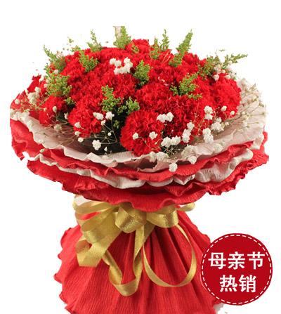 33枝康乃馨/温暖的怀抱