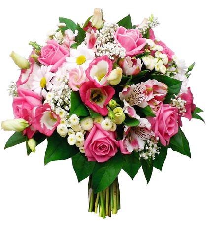 8枝粉玫瑰/法国
