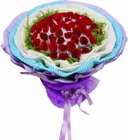 66朵红玫瑰/将爱情进行到底