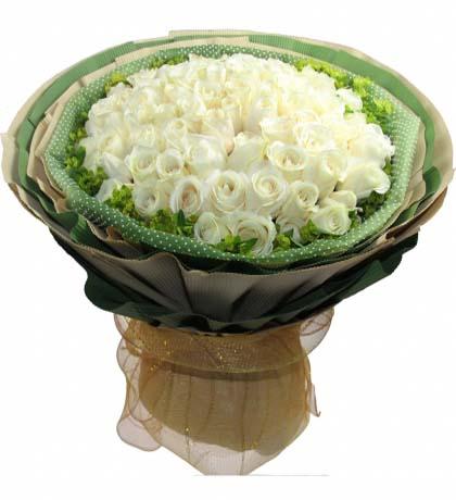 66枝白玫瑰/白色恋人