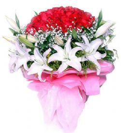 66枝红玫瑰/真的爱你