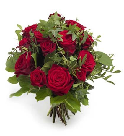 12枝红玫瑰/德国