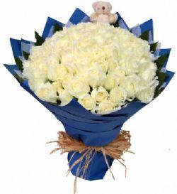 99枝白玫瑰/一起幸福