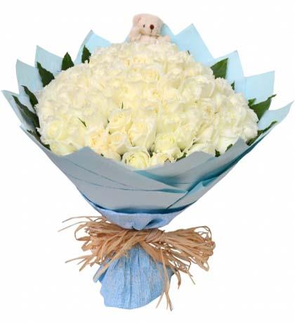99枝白玫瑰/爱的主打歌