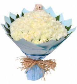 99枝白玫瑰/愛的主打歌: 99枝白玫瑰,綠葉圍邊,隨機搭配小熊一只
