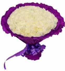 99枝白玫瑰/遇见你是我的缘 : 99枝白玫瑰