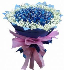 99枝蓝玫瑰/快乐情人