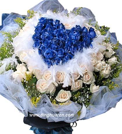 99枝藍玫瑰/今生的摯愛: 99枝藍玫瑰心形,外圍66枝香檳玫瑰,滿天星,黃鶯外圍。