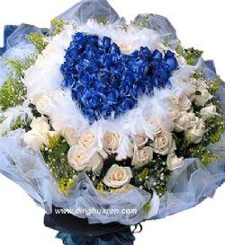 99枝蓝玫瑰/今生的挚爱