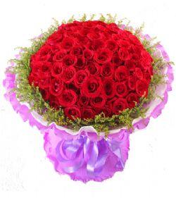 99枝红玫瑰/至爱: 99枝超级红玫瑰,满天星和黄莺围绕