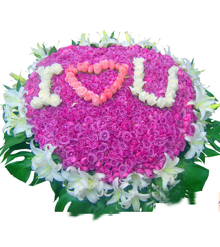 999朵紫玫瑰/我爱你