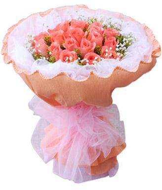 19枝粉玫瑰/一生追随
