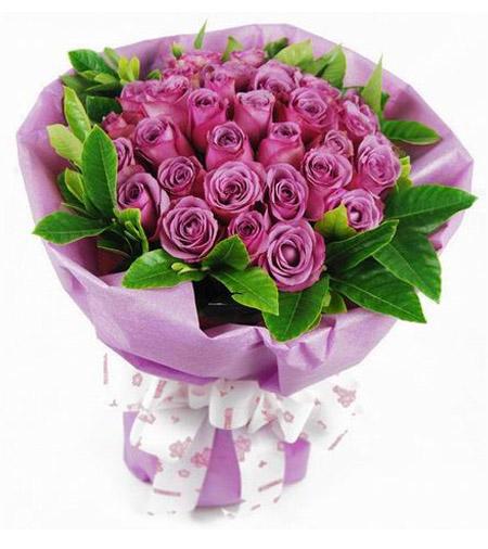 18枝紫玫瑰/你與我