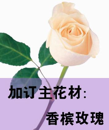 加订主花材:香槟玫瑰