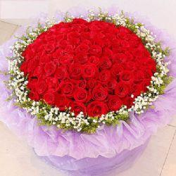 爱的守候/99朵红玫瑰