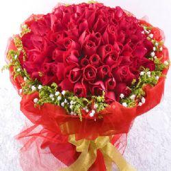 亲密爱人/99朵红玫瑰