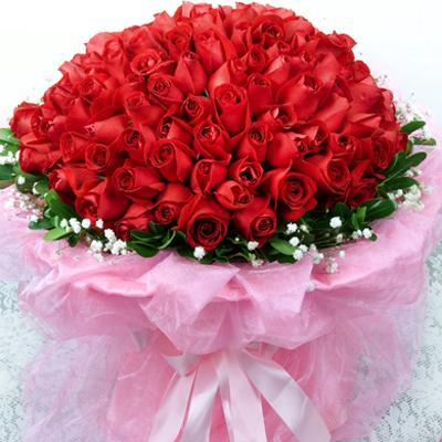 流星/99朵红玫瑰
