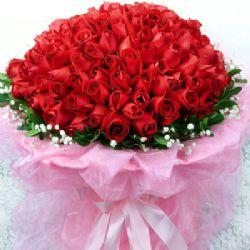 流星/99朵红玫瑰: 99朵红玫瑰,满天星绿叶点缀