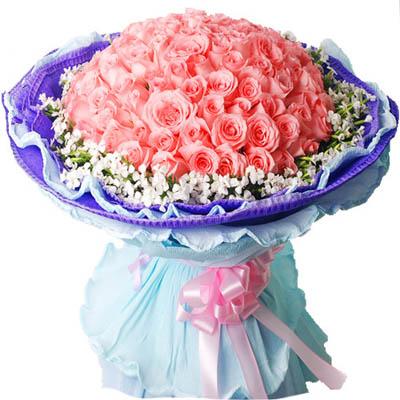 长相守/99朵粉玫瑰: 99朵粉玫瑰加满天星围边