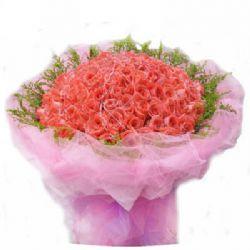 祝福/99朵粉玫瑰