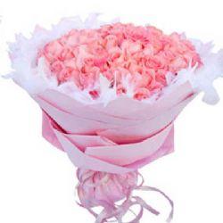 爱你久久/99朵粉玫瑰