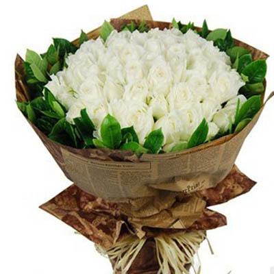�正浪漫/99朵白玫瑰