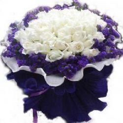 不能�]有你/99朵白玫瑰