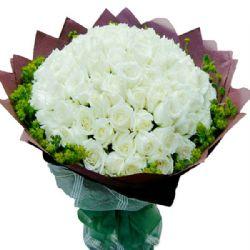 亲密爱人/99朵白玫瑰