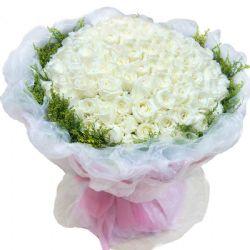 如果爱/99朵白玫瑰