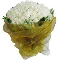 心愿/99朵白玫瑰