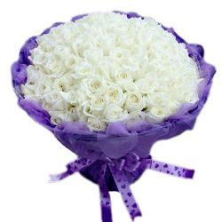 献上我的真心/99朵白玫瑰