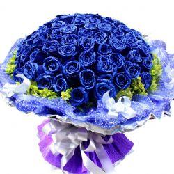 你的微笑/99朵蓝玫瑰