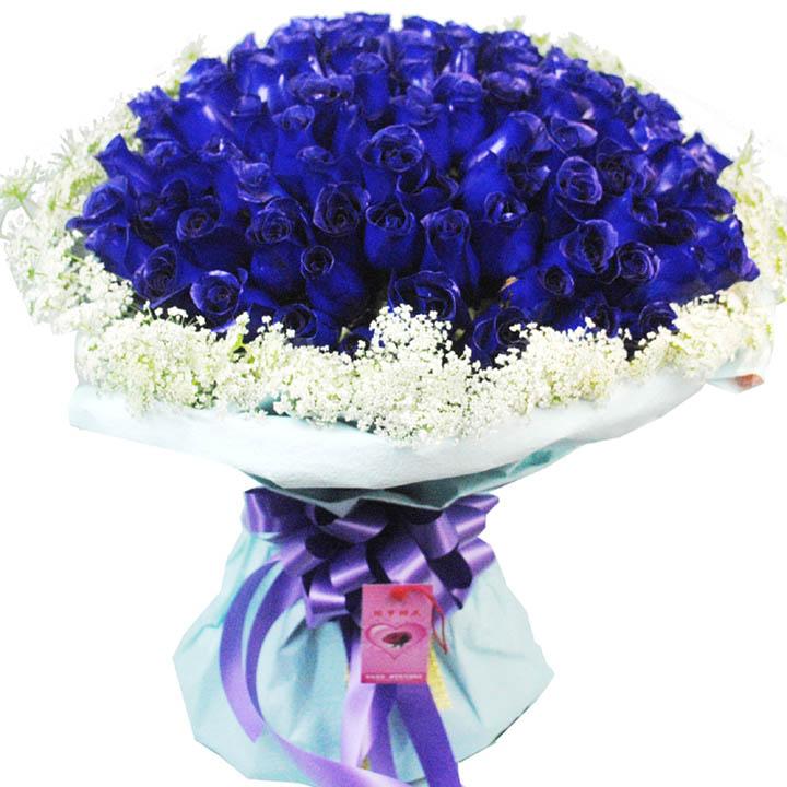 蓝色浪漫/99朵蓝玫瑰