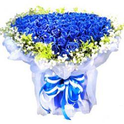 海洋之心/99朵蓝玫瑰