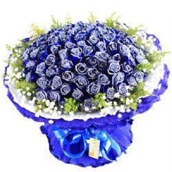 甜蜜爱人/99朵蓝玫瑰