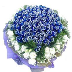 永恒之美/99朵蓝玫瑰