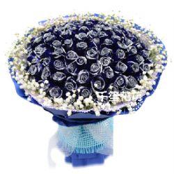 爱的动力/99朵蓝玫瑰