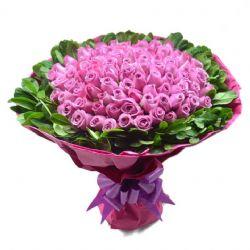 �鄱冀o你/99朵紫玫瑰