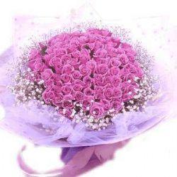 想你在夜晚/99朵紫玫瑰